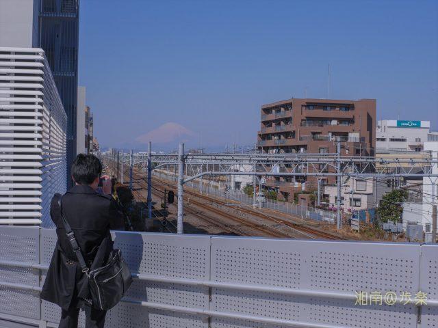 鮮明な富士山とはしばしのお別れ